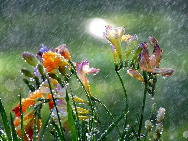 Bəzi rayonlarda yağış yağacaq, dolu düşəcək