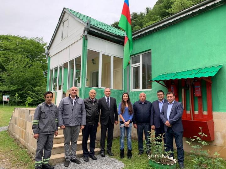 Кавказских зубров возвращают азербайджанской природе - ФОТО