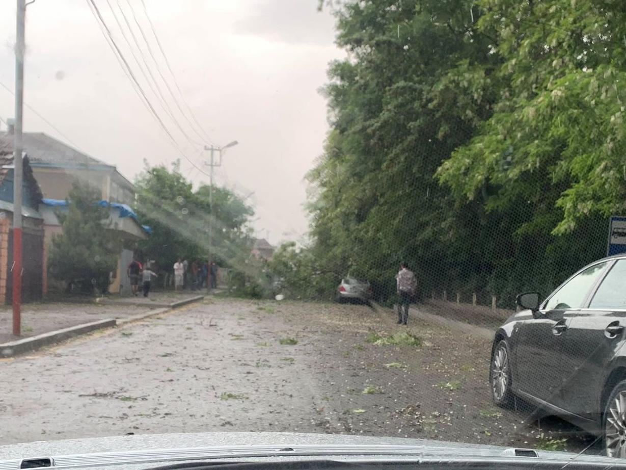 Сильный ветер привел к отключению электричества в северных районах Азербайджана