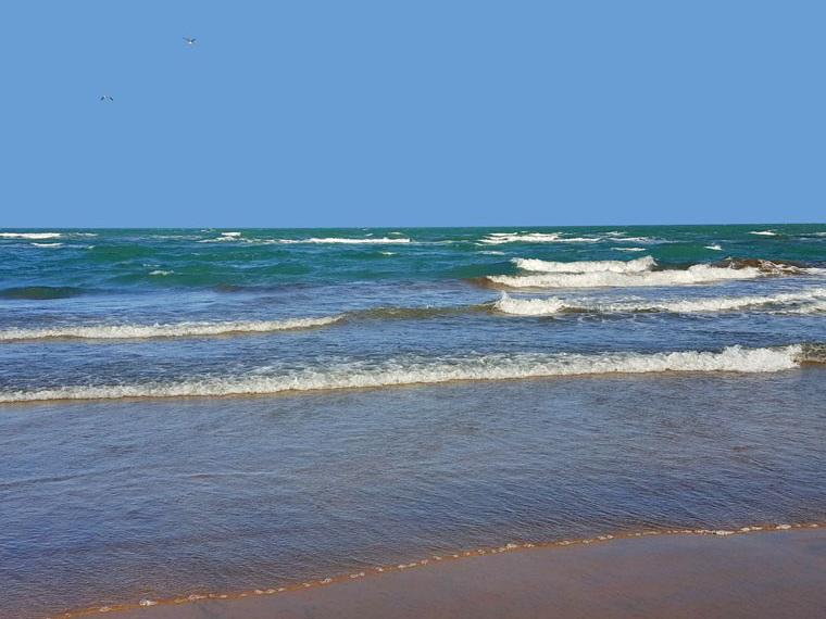 МЭПР: Пляжи Набрани непригодны для купания