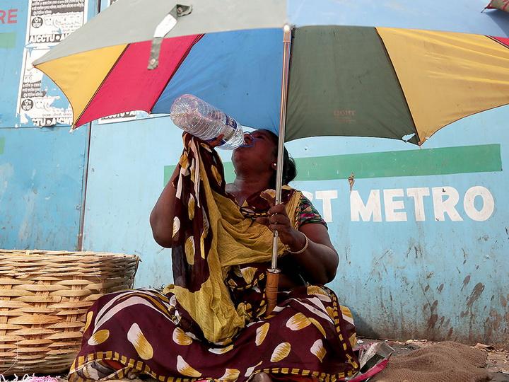 На северо-востоке Индии 29 человек погибли из-за аномальной жары