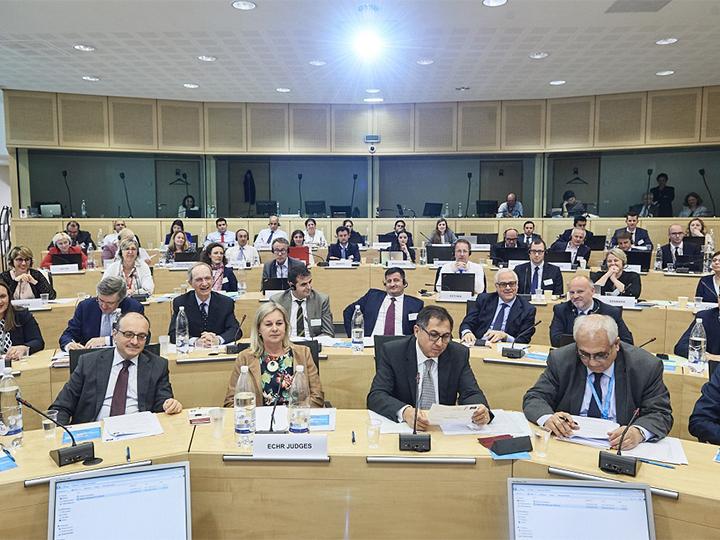 Состоялось специальное заседание Европейского суда по правам человека - ФОТО