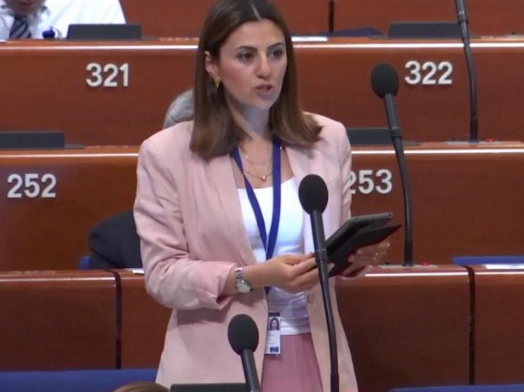 С.Фаталиева: Неприемлемо, когда личные интересы ставятся целью при рассмотрении щепетильных трагических случаев
