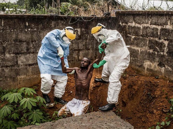 Вспышку вируса Эболы назвали ЧС международного масштаба