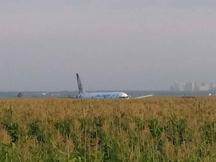Появилось видео аварийной посадки самолета A321 в Подмосковье - ВИДЕО - ОБНОВЛЕНО
