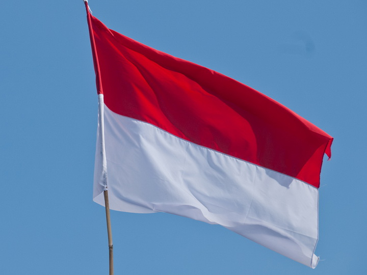 Президент Индонезии попросил парламент перенести столицу страны из Джакарты