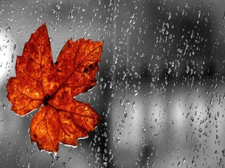 Sabah əsl payız havası olacaq: küləkli və yağışlı