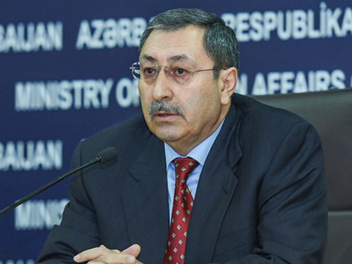 МИД Азербайджана отмечает прогресс в делимитации и демаркации несогласованных участков границы с Грузией