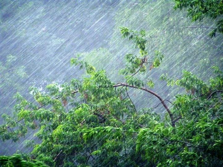 Предупреждение: В Азербайджане ожидаются почти штормовой ветер и ливень