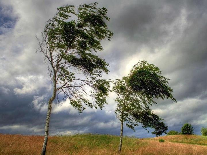 Meteoroloqlardan külək xəbərdarlığı