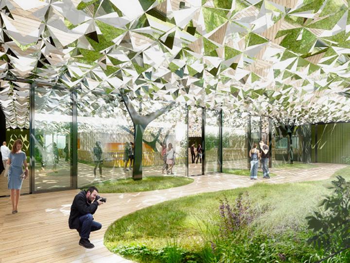 Лес посреди офиса - новый проект голландских архитекторов - ФОТО