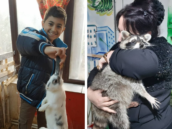 Контактные зоопарки – издевательство над животными? - ФОТО - ВИДЕО