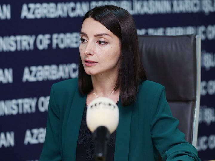 Лейла Абдуллаева: Конфликт должен быть урегулирован в рамках территориальной целостности Азербайджана