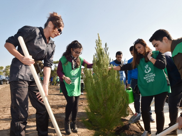 Мехрибан Алиева поделилась видеороликом о посадке деревьев в новом парке – ВИДЕО