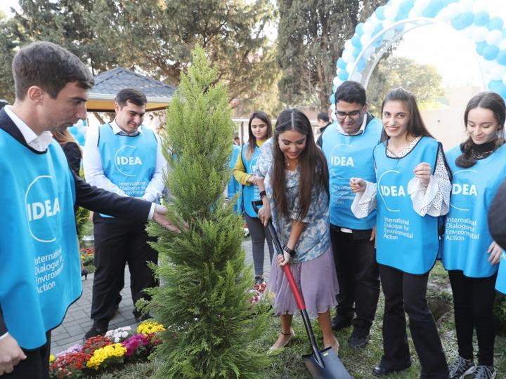 В Баку в рамках проекта «Наш двор» благоустроен и передан в пользование жителей очередной двор - ФОТО