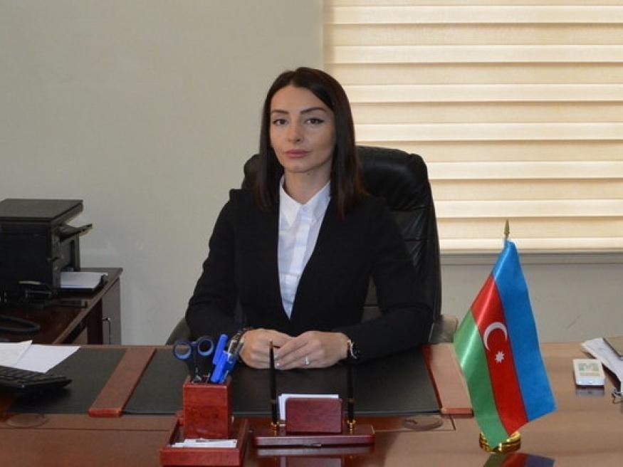 Лейла Абдуллаева: Заявления Пашиняна рассчитаны на внутреннюю аудиторию