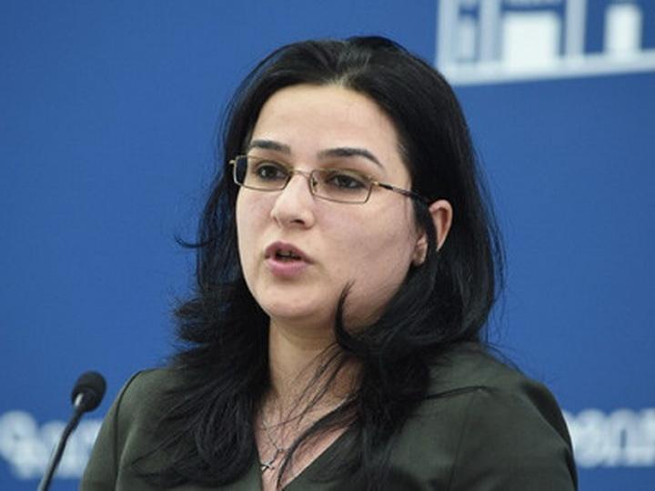 Армянская сторона изменила текст выступления Мнацаканяна в Братиславе о карабахском урегулировании