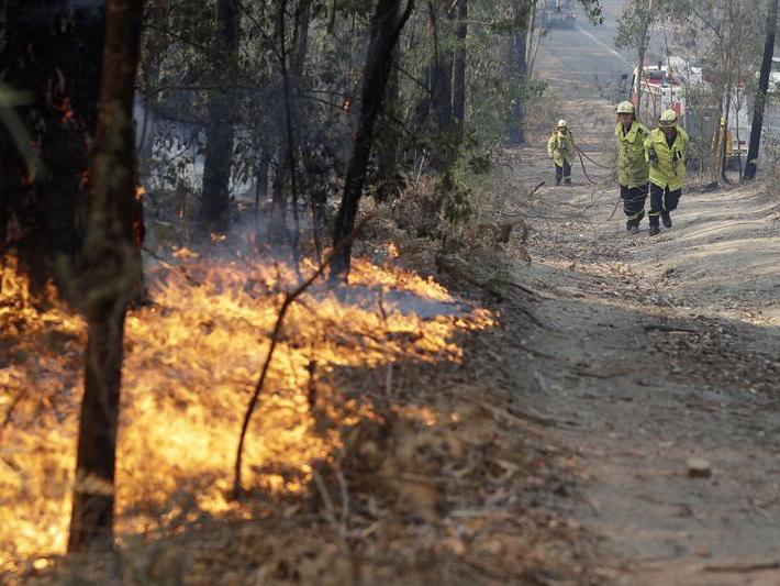 Эксперты назвали сумму убытков для экономики Австралии из-за пожаров