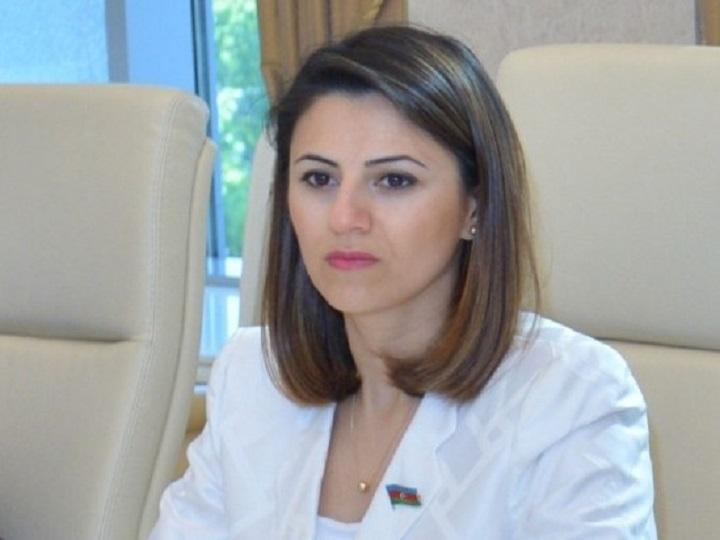 Sevinc Fətəliyeva: Prezident İlham Əliyev Paşinyana tarix dərsi keçdi