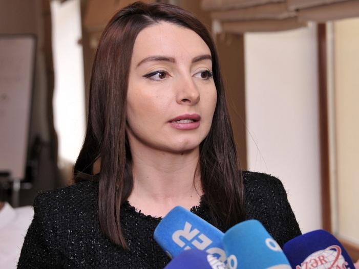 Лейла Абдуллаева: Азербайджанское государство мобилизовало все возможности для обеспечения безопасности граждан