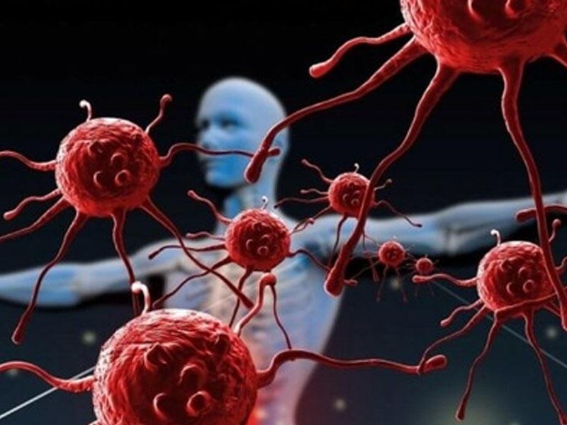Dünyanın ən təhlükəli 10 virusu...