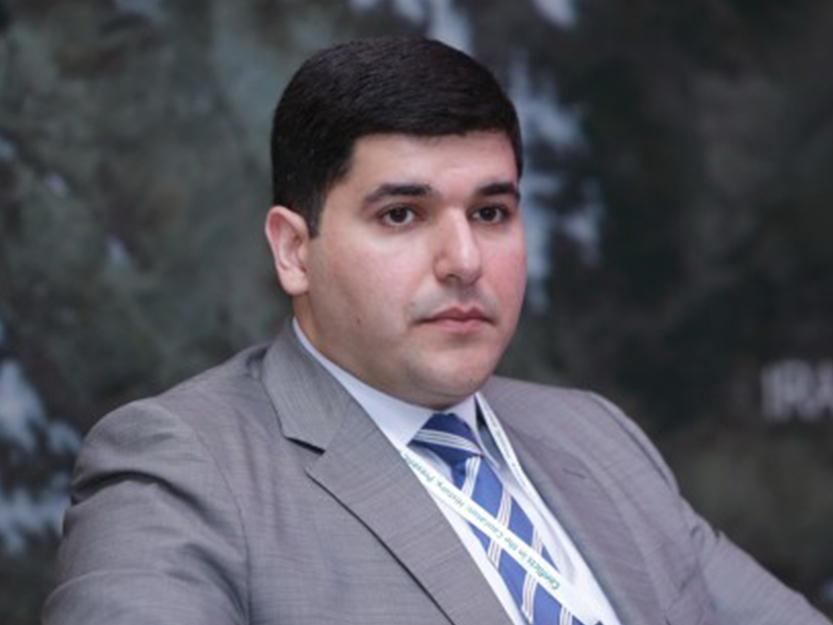 Фархад Мамедов: Коронавирус обнажил практически все уязвимые стороны Армении