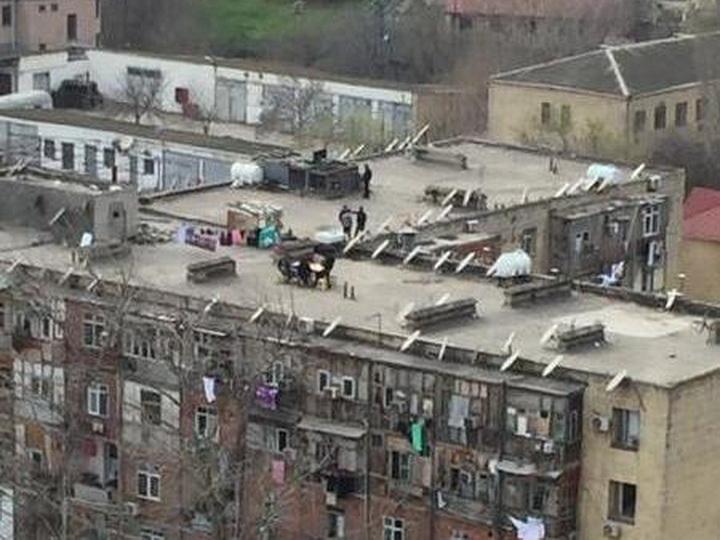 На крыше дома своего: бакинцы нашли необычный способ обойти карантин – ФОТО
