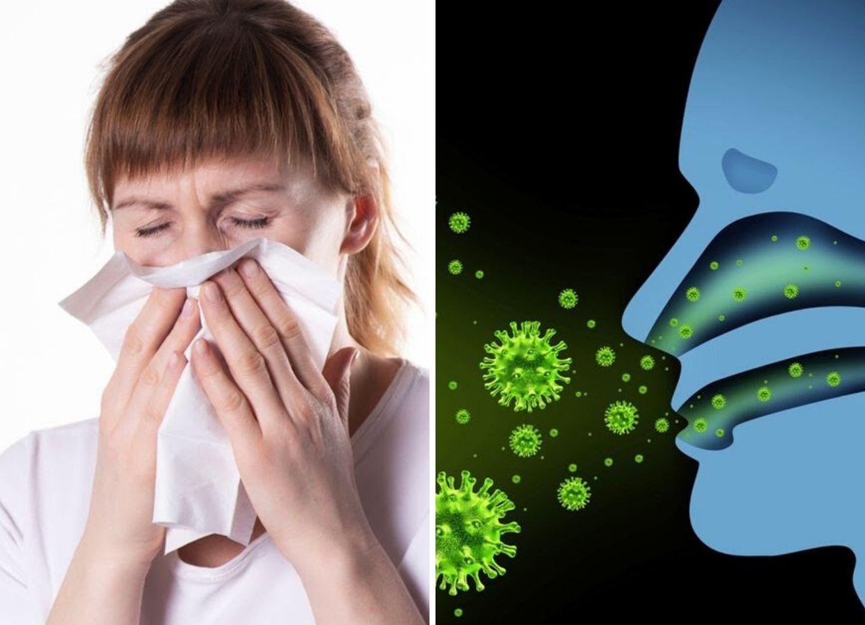 ВОЗ: Двигатель пандемии - это чихание или кашель, или зараженные поверхности