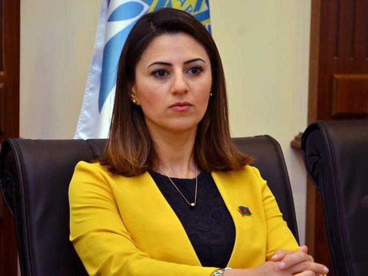 Севиндж Фаталиева: Азербайджан последовательно выступает за формирование глобальной и региональной системы безопасности
