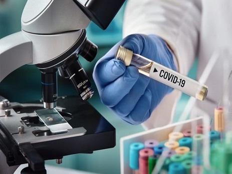 Bu günün statistikası: daha 248 nəfər koronavirusa yoluxdu, 101 nəfər sağaldı
