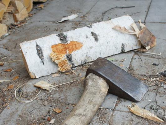 В Азербайджане брат убил сестру