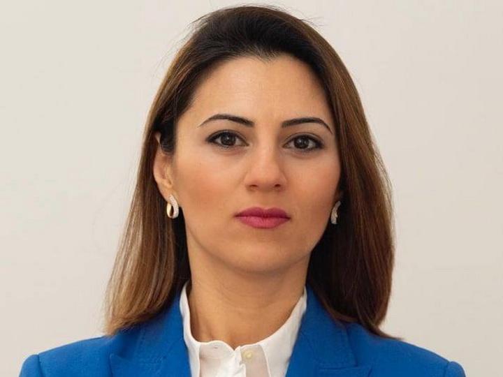 Севиндж Фаталиева: «Сила и стратегический подход Азербайджана создадут в регионе новую реальность»