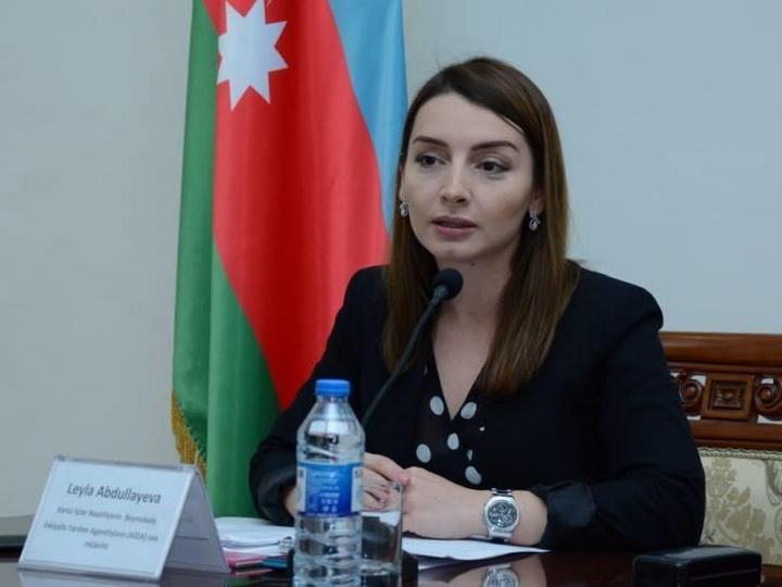 Лейла Абдуллаева: «130 стран поддержали инициативу Президента АР о проведении специальной сессии Генассамблеи ООН»
