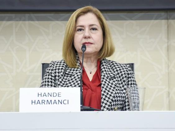 Ханде Харманджи: Мы будем вынуждены делать то, что нам не нравится