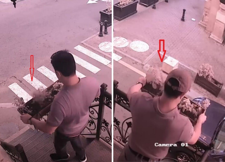 Общественное порицание сработало: Похищенные в центре Баку цветы возвращены на место – ВИДЕО