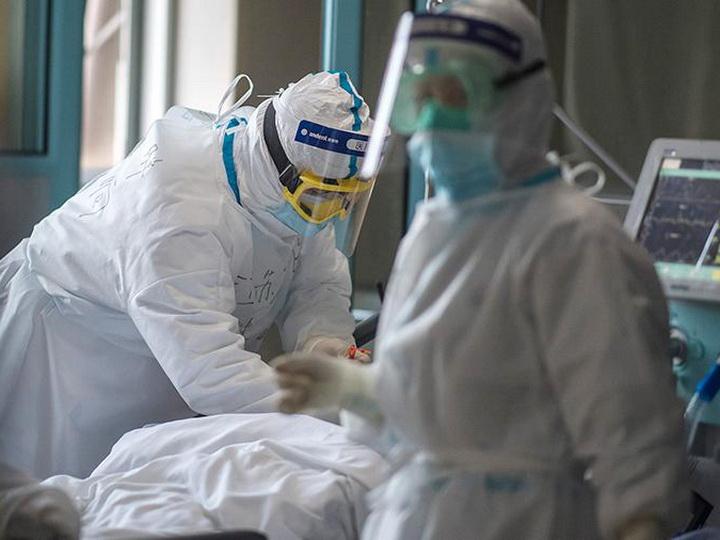 Коронавирус в Азербайджане: 520 новых случаев заражения, излечились 486 человек