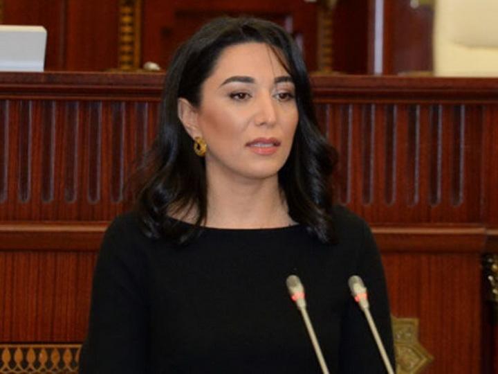 Омбудсмен: Против Армении должны быть введены серьезные санкции