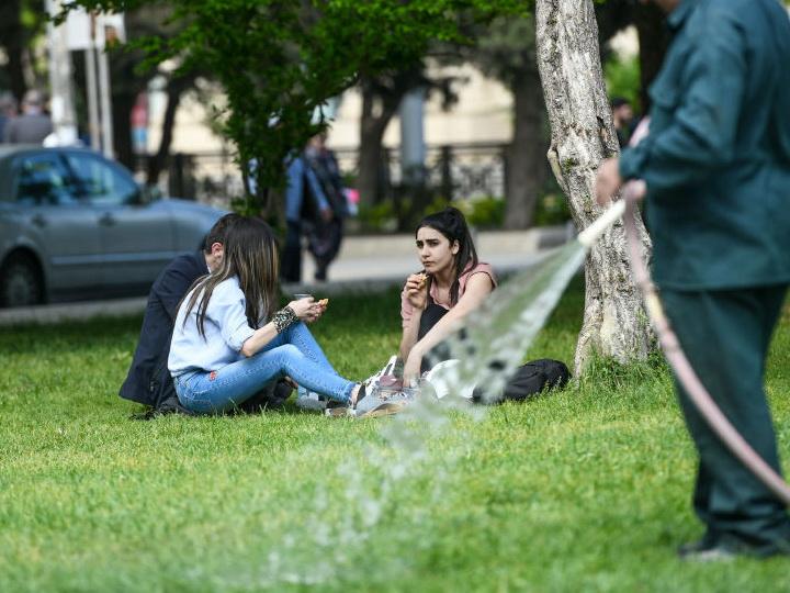 В Баку запрещено выгуливать собак и лежать на газонах? – ПОДРОБНОСТИ
