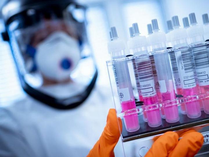 Вакцина, разработанная в Оксфорде, помогает бороться с коронавирусом