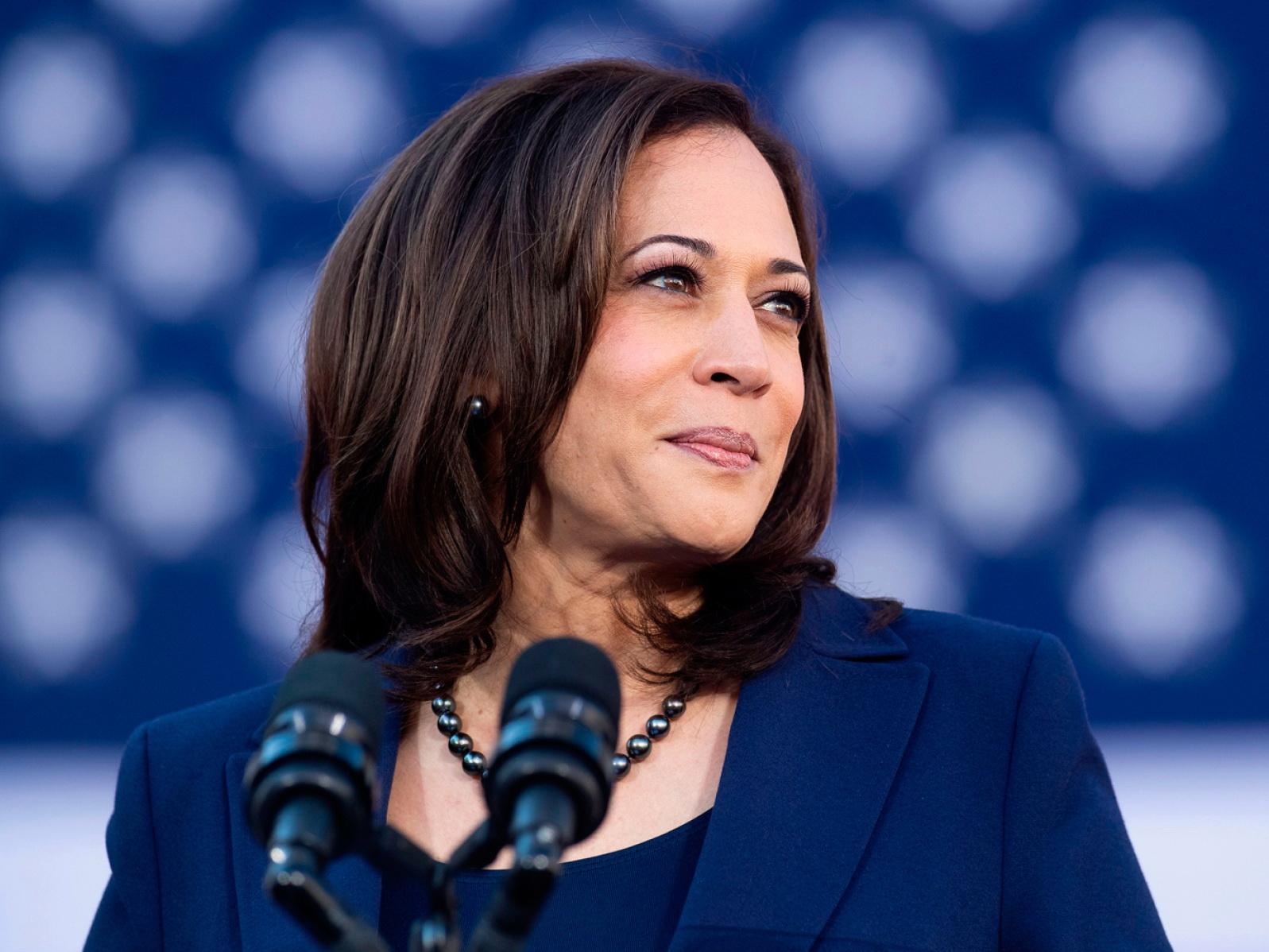Выборы в США: напарником Джо Байдена в предвыборной гонке стала темнокожая сенатор Камала Харрис – ВИДЕО