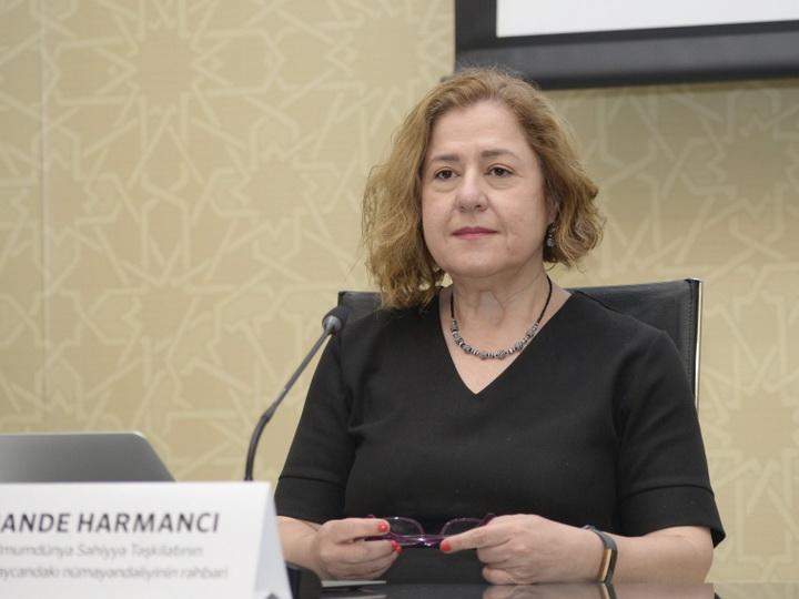 Ханде Харманджи: У правительства Азербайджана есть и твердое желание противостоять пандемии, и возможности для этого