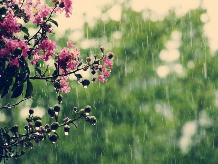 Sabahın havası: yağış yağacaq, dolu düşəcək