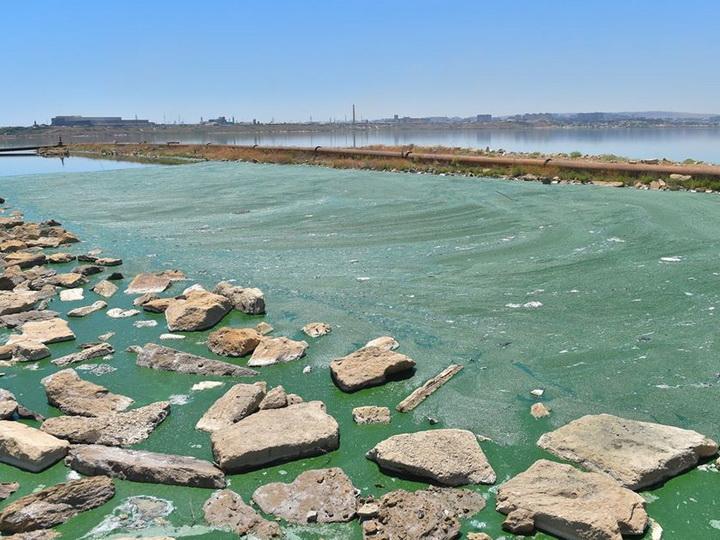 Беюкшор превратился в самое загрязненное озеро: бездействие убивает экологию Абшерона – ФОТО