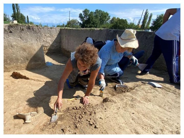 В Шеки обнаружен новый античный памятник – ФОТО
