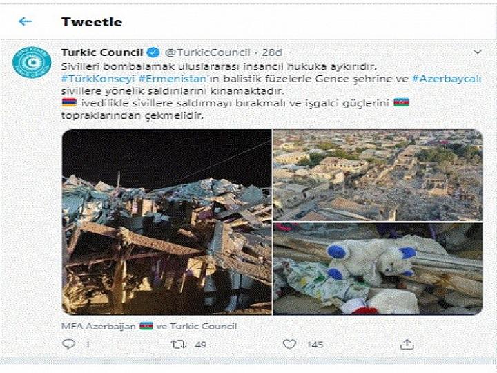 Türk Şurası: Ermənistan israrlı hücumlarını dayandırmalı, işğalçı qüvvələrini geri çəkməlidir