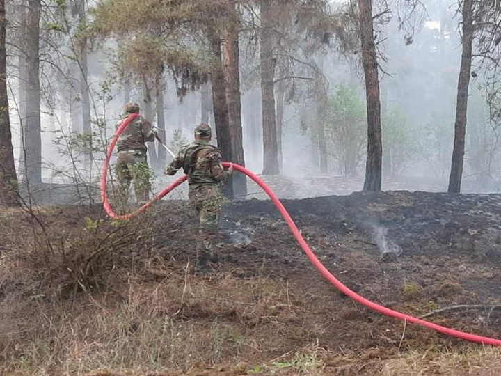 Вспыхнувший в результате армянского обстрела пожар в лесу Гейгеля потушен