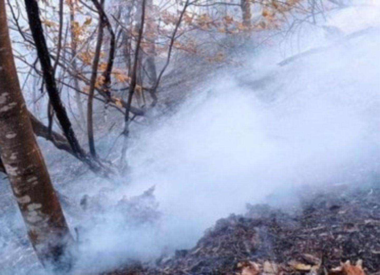 Армения совершает экологический террор, используя фосфор