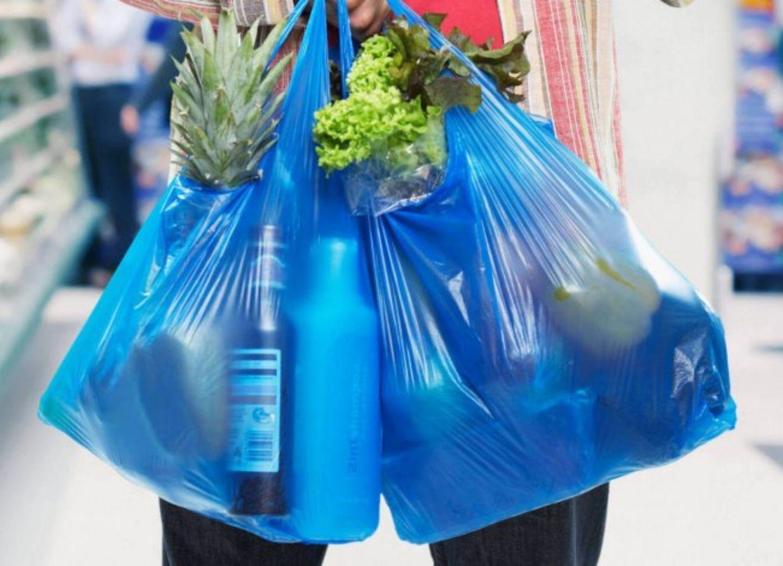 Фируза Султан-заде: Использование биологически неразлагаемых пластиковых пакетов совершенно неоправданно