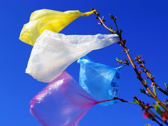Милли Меджлис одобрил во втором чтении ограничения на продажу полиэтиленовых пакетов