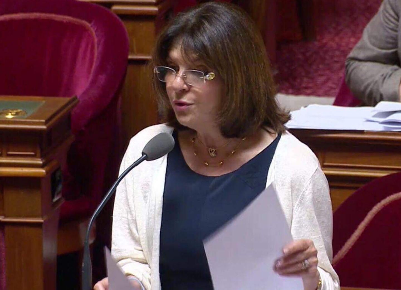 Сенатор Франции: Наконец увижу Нагорный Карабах своими глазами - ФОТО